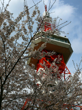 utunomiya_tower.jpg